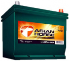 Extra Start Asian Horse 60.0