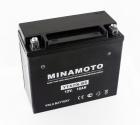 Minamoto YTX20L-BS