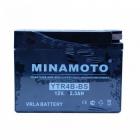 Minamoto YTR4B-BS
